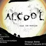 """Concert pentru lansarea CD-ului """"Alcool"""", la Sinagogă"""