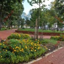 parc municipal bistrita arhiva